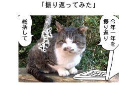 連載マンガ「田代島便り 出張版」 第27回「振り返ってみた」