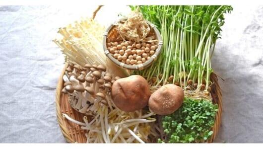 価格高騰しても平気! 冬を乗り切る安くて栄養豊富な野菜はコレ!!