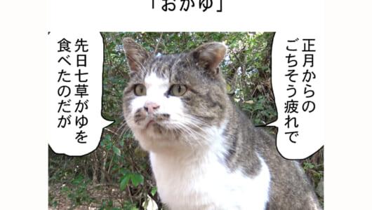 連載マンガ「田代島便り 出張版」 第29回「おかゆ」