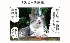 連載マンガ「田代島便り 出張版」 第30回「スピーチ原稿」