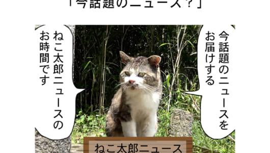 連載マンガ「田代島便り 出張版」 第33回「今話題のニュース?」