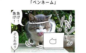 連載マンガ「田代島便り 出張版」 第35回「ペンネーム」