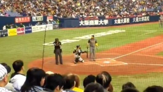 やはり世界レベル! WBCオーストラリア代表が日本の名物球審に思わず反応