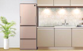 バカでかい冷蔵庫はもういらない! プロが推す100~300ℓ台の「安オシャ」冷蔵庫ベストバイ
