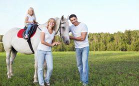 アメリカのシンデレラ・ホースのごとく馬と暮らす生活について考えてみた