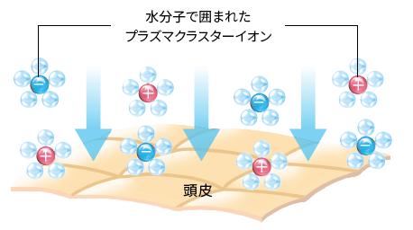 ↑水分子で囲まれたプラズマクラスターイオンが、頭皮のうるおいを保ち、皮脂バランスを整えるとのこと