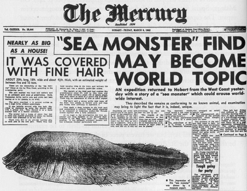 ↑1960年、オーストラリアの新聞で報じられた海の怪物