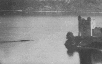 ↑1955年7月29日にフランク・A・マグナブが撮影したネッシーの背の写真