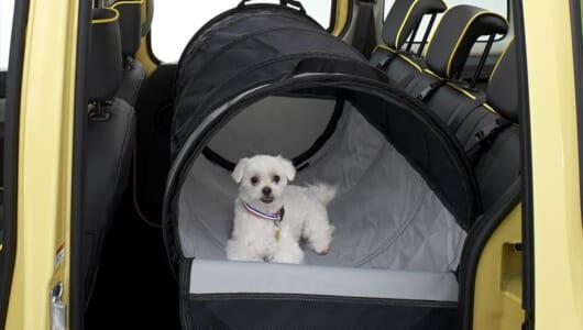 """""""愛犬とドライブ""""のためにつくられたクルマ! 獣医師が監修したルノー・カングー特別車の装備がスゴイ!"""