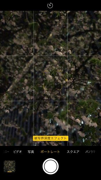 ↑カメラを起動し、「ポートレート」モードに設定して画面にタッチ。スマホが被写体との距離感を自動で検知して、指定した部分にピントを合わせ、そこ以外の距離がある部分をボカしてくれます