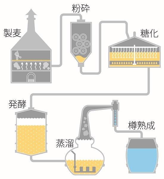 ↑一般的なウイスキーの製造工程。穀物を糖化、発酵させ、蒸溜して熟成というのがおおまかな流れです