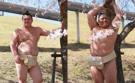 有名力士たちがグラビアアイドルに挑戦!? 日本相撲協会のTwitterがネット上で大反響!