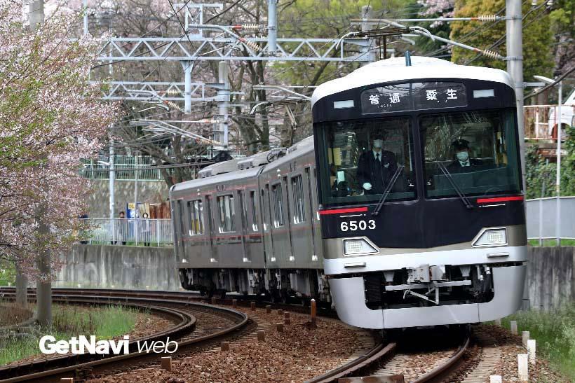 ↑上記の神戸電鉄6000系は4両ということもあり絵になったが、この写真の6500系は3両編成と1両短くどうも絵になりにくかった