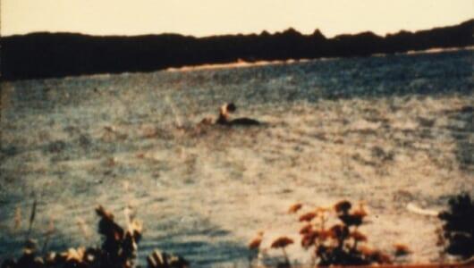 【ムーUMA情報】200件以上の目撃情報! アメリカ版ネッシー「水棲UMA」の正体が見えてきた