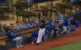 これは見事! MLBでボールボーイがゴールドグラブ級のスーパーキャッチ