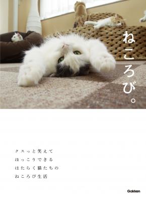 20170519_suzuki_10