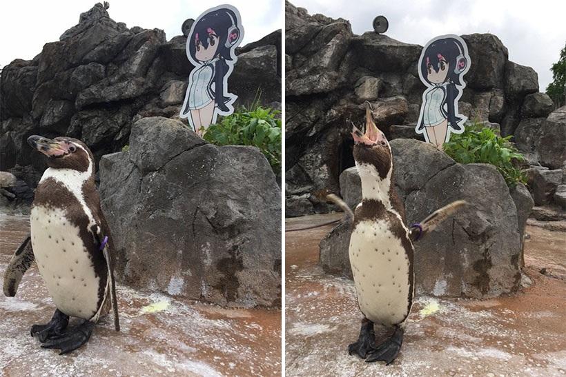 出典画像:東武動物公園【公式】リュウくんTwitterより