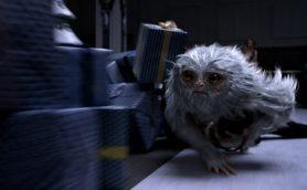 GWのイッキ見に! 「ファンタビ」と「ハリー・ポッター」シリーズの関連ポイントを映画ライターが解説!