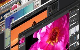 【まとめ】カメラメーカー5社の純正RAW現像ソフトの特徴は? 注目機能を画像で解説