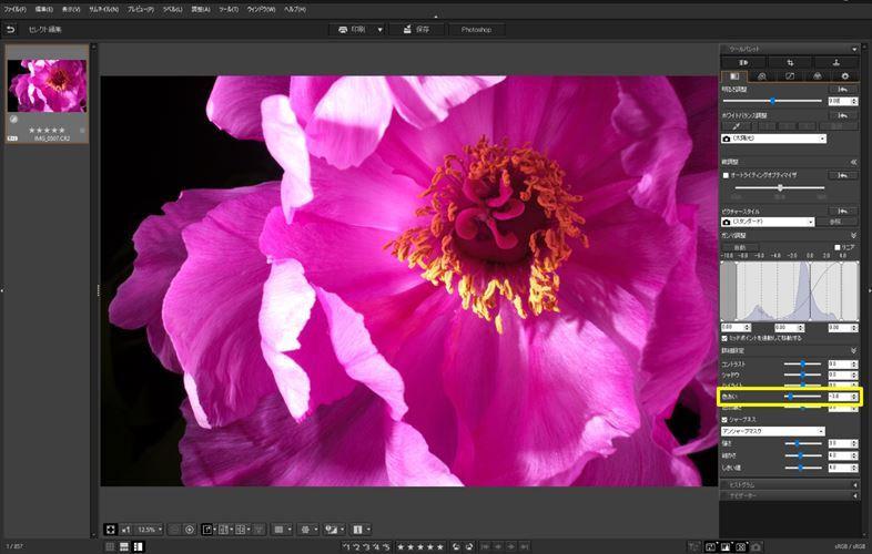 ↑「色あい:-3」に設定。赤みが加わり、花びらは紫に近い色になった