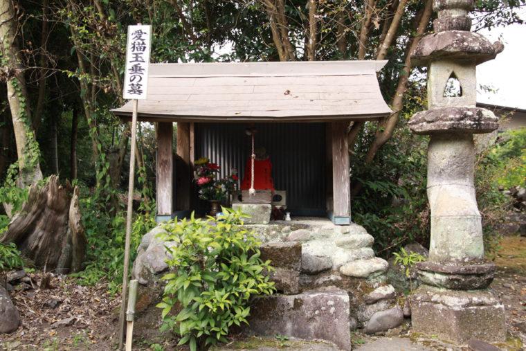 20170602_suzuki_32