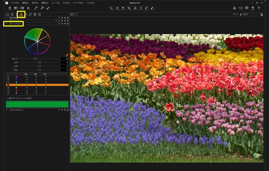 ↑元の写真。「カラーエディター」を使って花の色を個別に調整する