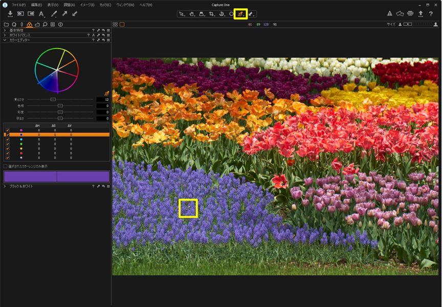 ↑紫の花を調整する。まずはカラーピッカーを使って、紫の花をクリック