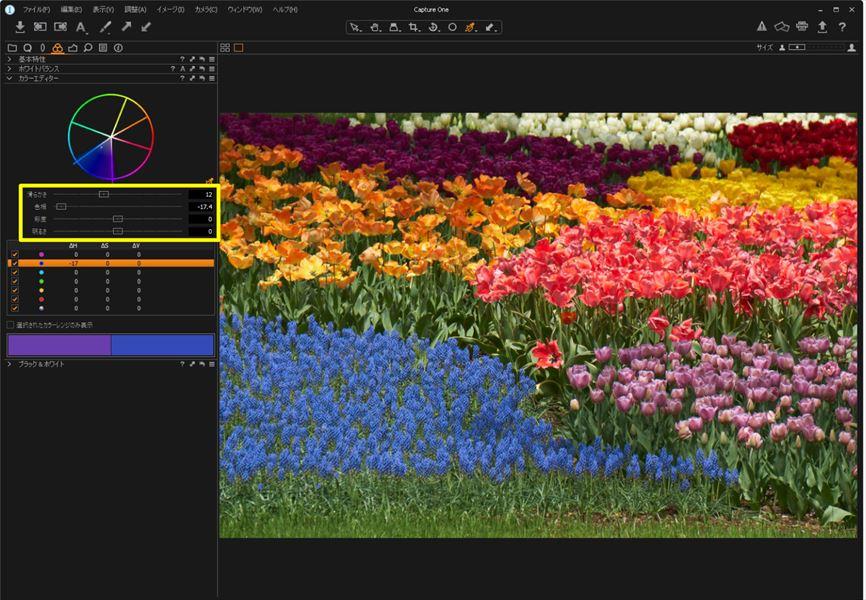 ↑そして、「色相」のスライダーを動かすと、紫の花の色が変化する