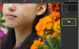 RAW現像なら写真にとことんこだわれる! ニコンCapture NX-Dの使い方【上級編】