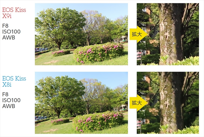 ↑両機の低感度時の画質を比較。ピクチャースタイルやホワイトバランスはオートに設定して標準感度のISO100で撮影。色傾向や露出傾向に大きな差は見られなかった。レンズは、それぞれのキットレンズのワイド端(28.8ミリ相当)で撮影したが、解像感の差もほぼない。感度を上げない撮影では、両機の画質差はないといえる