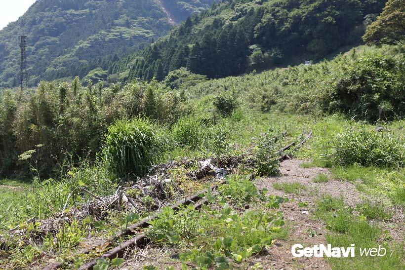 ↑震災後、棚田の中を走る線路は、いまでは見る影もない状況になっている