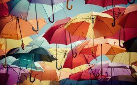 ロフトで見つけたオシャレで便利なレイングッズ11選――どんよりした梅雨こそ気分晴れやかに!