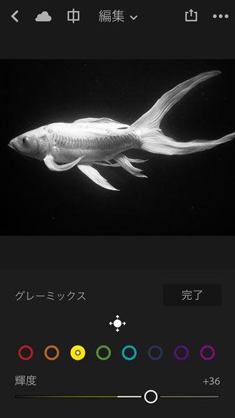 ↑グレーミックス機能では、8つの色相を選んだうえで、それぞれの輝度調整ができる。ここでは魚の黄色い部分を白くとばした