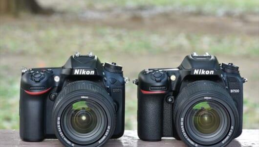 ニコンの一眼レフ・D7500とD7200を実写比較(前編)――新旧モデルの基本スペック/操作性/画質は?