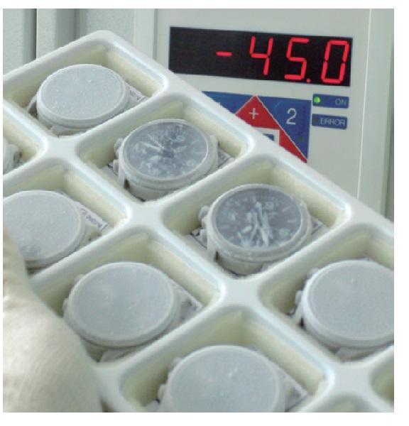 ↑オイルによって時計は-45℃から+80℃で精度を維持