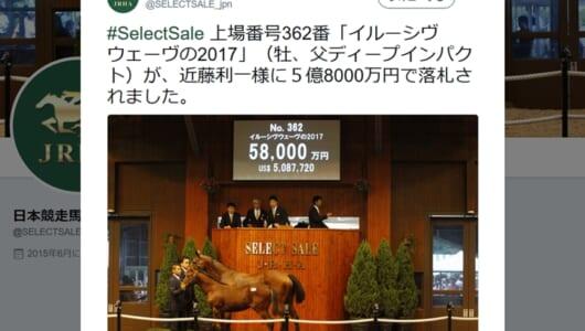 最高額は5億8000万円! 2017年セレクトセールの高額落札馬トップ5はこれだ
