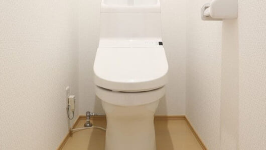 排泄だけじゃない、ストレスや性欲までも解消!? 日本人がトイレに求める思いとは?