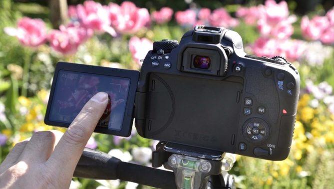 ↑タッチAF対応なら、AFが迷ったときや、撮影中にピント位置を変えたいときにも素早く操作できる。また、操作音(ノイズ)の低減にも役立つ