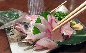 夏バテ防止に役立つ栄養素が判明! さかなクンおススメの旬の魚と面白くて残酷な雑学まとめ