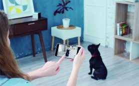 Instagramで人気のワンニャンたちがチェック! 話題のペットカメラで見守る&癒される