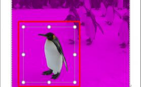 ワードで「画像の切り抜き」ができるって本当? 意外と知らないワード便利テク