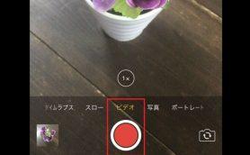 【iPhone】シャッター音を鳴らさずに撮影するには? 「パシャッ」が気になる場所でも安心!
