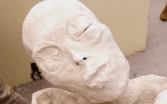 異星人ミイラの頭部。