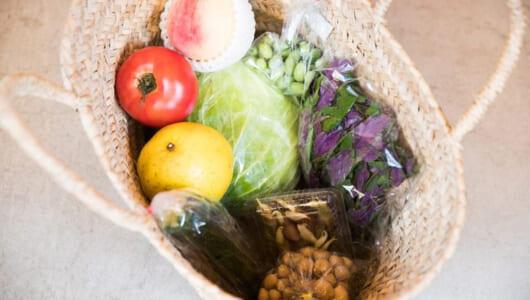 """最短1時間で九州の有機野菜が自宅に届く! IT時代の""""スマート八百屋""""ベジオベジコ根津を訪ねる"""
