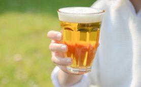 松本城公園「品格にふさわしくない」でアルコール規制……これから公共の場での飲酒はどんどん禁止される?