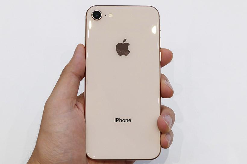 ↑iPhone 8のサイズ感