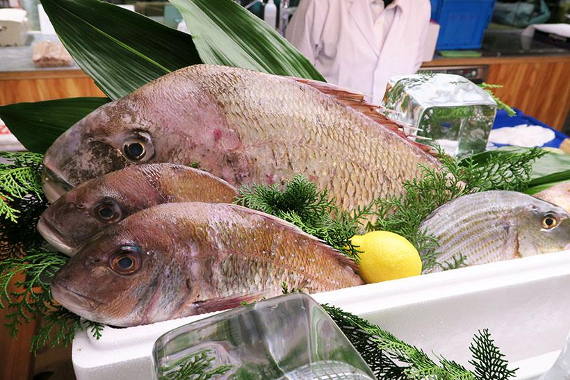 ↑会場では「奇跡の海」から仕入れた海の幸を使った料理が登場