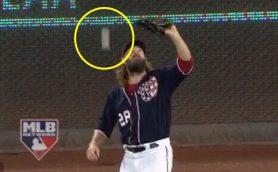 夢であってほしかった……MLBで空前絶後のキャッチミスが発生!