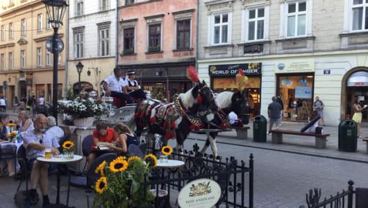 ワルシャワで過ごすパーフェクトな1週間! 現地ガイドが教えるポーランド旅行の王道