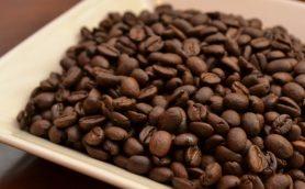 缶コーヒーだって進化してる! 仕事の合間に飲みたい秋の新作7選